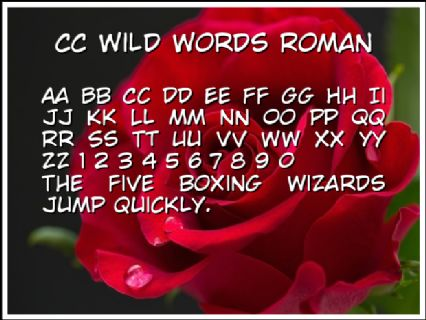 CC Wild Words Roman Font Preview