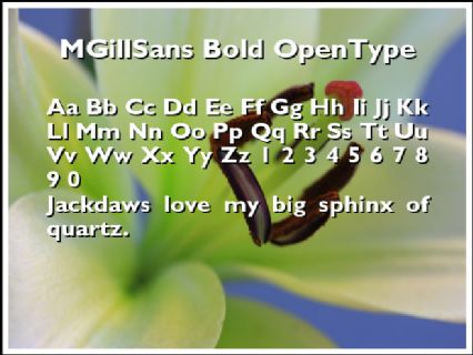MGillSans Bold OpenType Font Preview